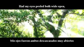 Pearl Jam - In My Tree + letra en español e inglés