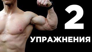 БОЛЬШОЙ БИЦЕПС 2 упражнения