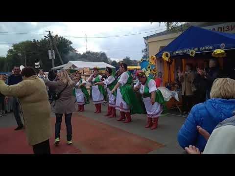 Никополь-ART: Нікопольський район у Петриківці