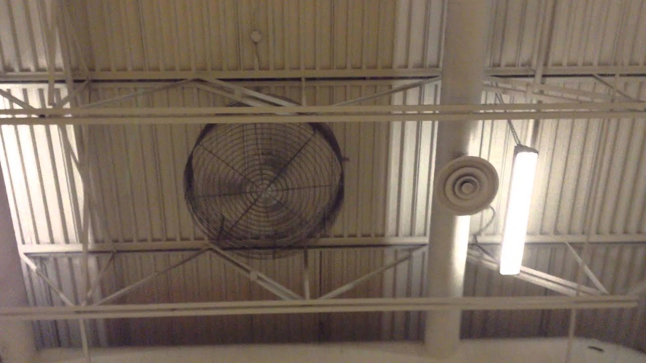 "56"" Canarm Industrial Ceiling Fans in a Gymnasium - YouTube"