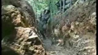 16th Krajinian Brigade, Bosnian War.