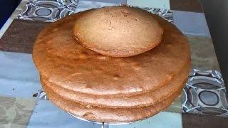 Бисквит со сгущенкой. Корж из сгущенки. Бисквитный торт со сгущенкой. Рецепт торта с сгущенкой.