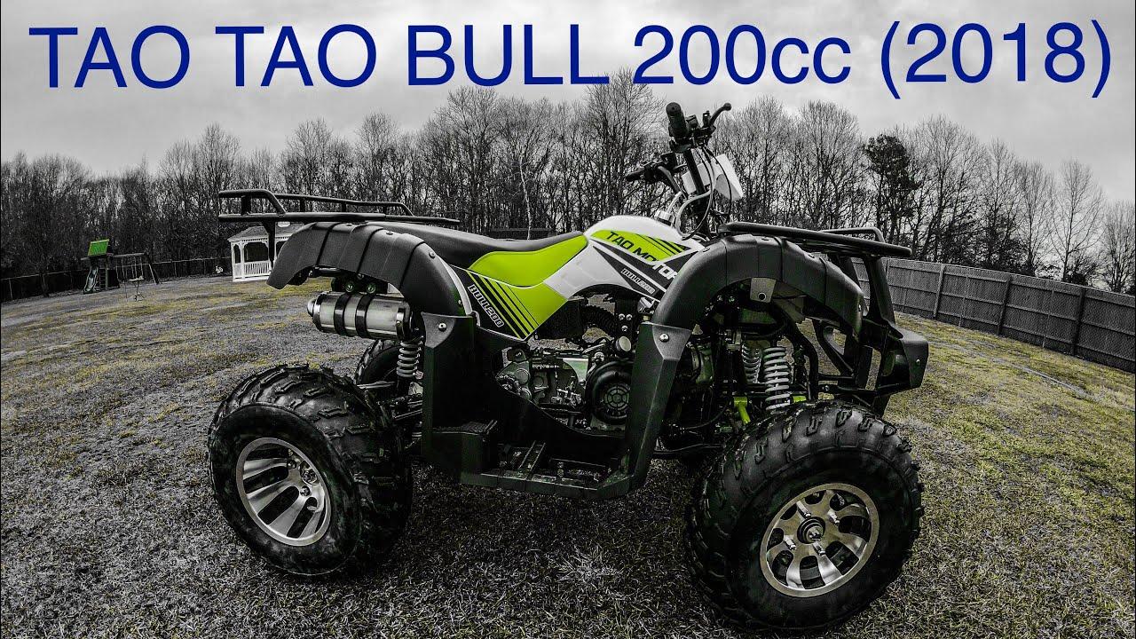 tao tao bull 200 atv quad 2018 version 200cc review youtube Tao Tao ATV Colors tao tao bull 200 atv quad 2018 version 200cc review