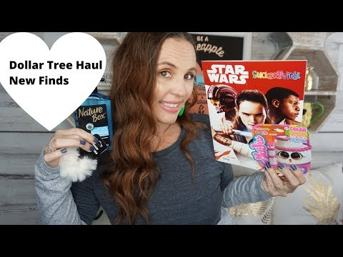 Dollar Tree Haul November 9 2019| Great New Finds