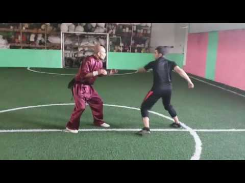 Chinese Martial Arts  : Seif
