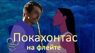 Покахонтас на флейте /Pocahontas on the flute(cover)