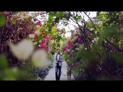 Adam Stern - MyEverything [OFFICIAL Music Video YouTube]