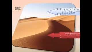 Африка экологические проблемы(Презентацию на тему проблемы экологии Африки можно бесплатно скачать на сайте Мир географии http://www.mirgeografii.ru..., 2014-05-23T14:07:20.000Z)