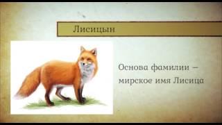 видео Происхождение фамилии Орлова