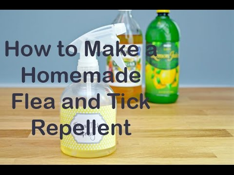 Homemade Flea and Tick Repellent