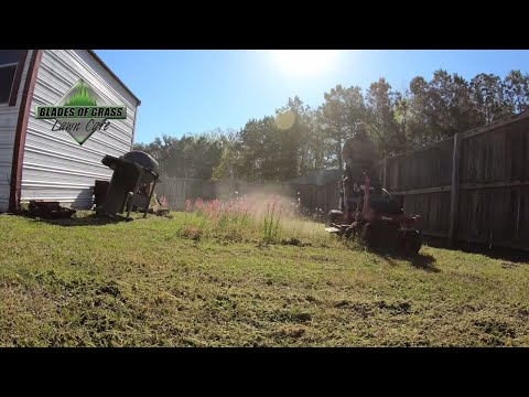 Cutting tall spring grass | LaserEdge Self Sharpening Blades | Spring lawn care 2019