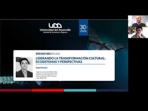 Liderando la Transformación Cultural: Ecosistemas y Perspectivas / Ángel Morales
