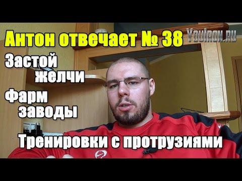 Антон Отвечает №38...