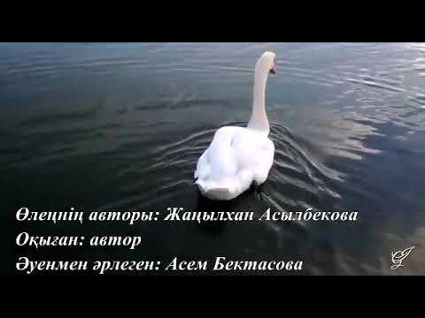 Поэзия. Жаңылхан Асылбекова