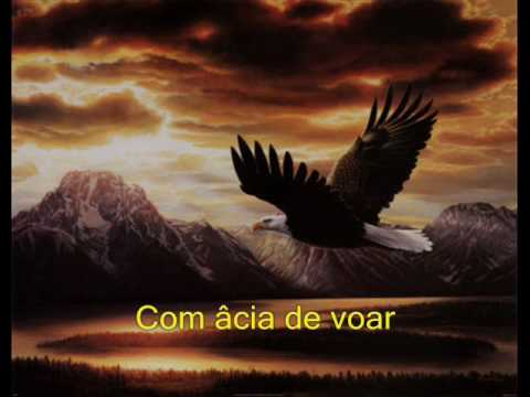 águia Pequena Padre Zezinho Letrasmusbr