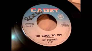 The Wildweeds - No Good To Cry 45 rpm!