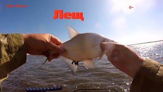 Рыбалка 2021 Лещ в сильный ветер на Самаркандском водохранилище