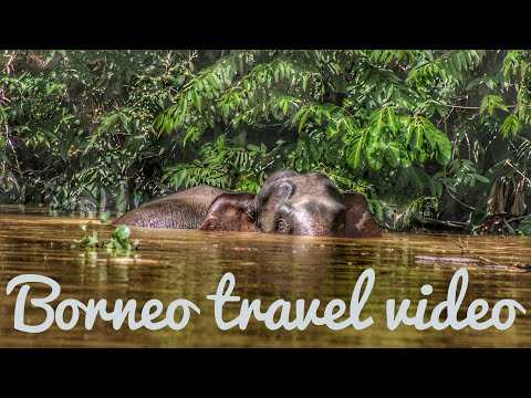 Malaysia Borneo travel video - 2017
