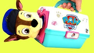 Learn Color Videos For Kids: Paw Patrol Chase & Skye Dog Carriers Playset