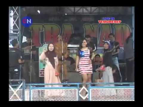 DEMI CINTA - Citra Nada Live in Temukerep