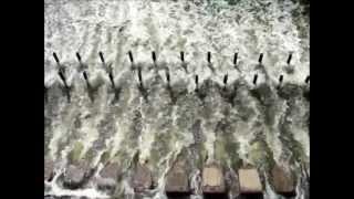 Зугрэс - Zuevske reservoir lake - Зуевское водохранилище - country style