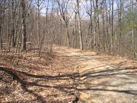 5.4 Acres in Bledsoe County for sale