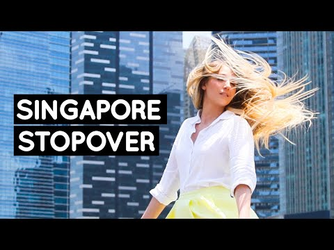 24 HOUR LAYOVER in SINGAPORE | Little Grey Box