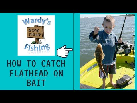 Flathead Series Bait Fishing