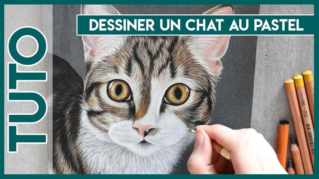 Tuto N 16 Dessiner Un Chat Au Pastel Close To Art Youtube