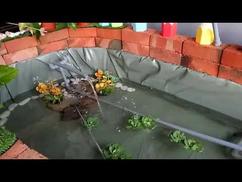 DIY : Decoration Kolam Terapi 🐠 🐠 🐠