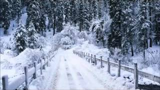 Carol Of The Bell by John Williams online video cutter com