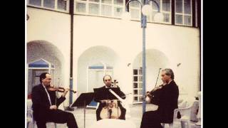 Mozart Divertimento no. 4 Rondo Allegretto KV439b (5/5)