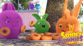 Cartoons for Children | SUNNY BUNNIES - DONUT FRENZY | Funny Cartoons For Children