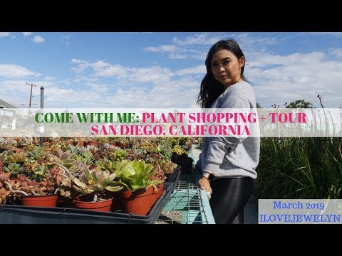 Come With Me: Plant Shopping + Tour | San Diego, CA  | March 2019 | ILOVEJEWELYN