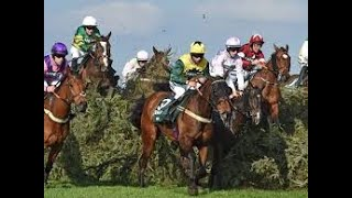Portman park horse racing betting guide sports betting lines database server