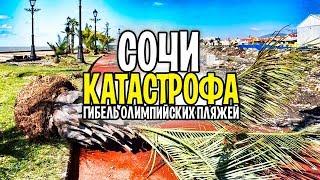 Катастрофа в СОЧИ и кто спасет от гибели Олимпийские пляжи?