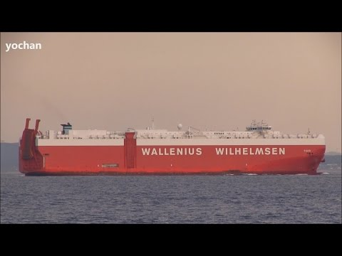 Vehicles Carrier / Ro-ro Ship: TIGER (Owner: Wilhelmsen Lines Car Carriers, IMO: 9505039)