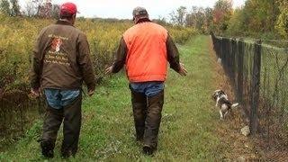 Skyview's Beagles Akc National Gun Dog Brace Trial 2012