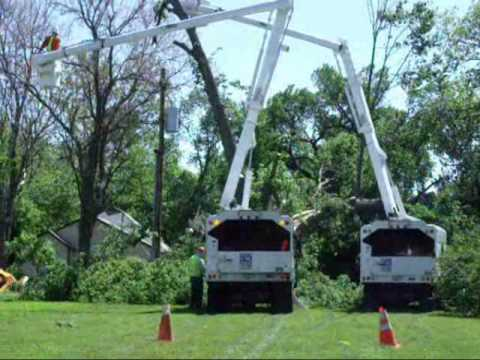Using two bucket trucks to remove a tree from a utility ...