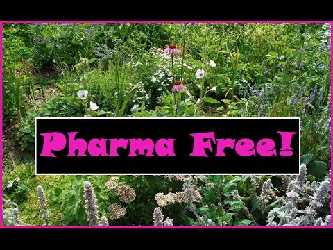 Pharma Free! Part 3