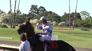 Russell Baze 12,000 Wins! - Watch the Dramatic Finish
