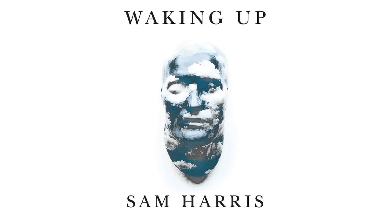 Sam Harris and Omar Aziz Email Exchange