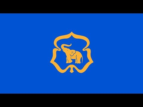 Eski Moski Kato - Cub/Scout/Little friend/Girl Guide/Song