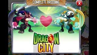 Vũ Liz Dragon City Tập 64 : Lai Thử Cặp Rồng Huyền Thoại Song Sinh ??