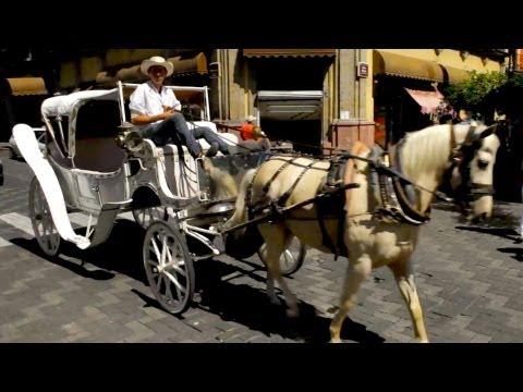 Next Stop: Guadalajara - City Tour Via Horse and Buggy