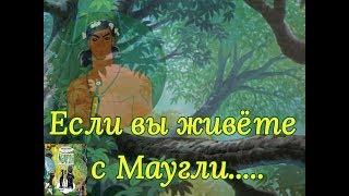 Жизнь с Маугли