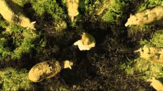 Nothing Left to Fear - TV-theek - Film à la carte trailer
