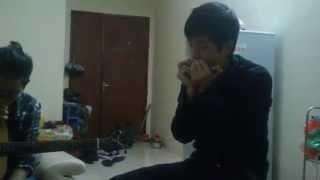 Chắc ai đó sẽ về acoustic harmonica guitar cover Sơn Tùng MTP