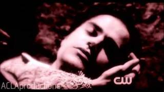 fine line between love and hate | Katherine & Stefan
