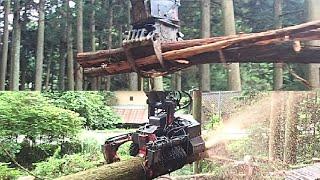 高性能林業機械 オイルクイックハーベスタ・グラップル コマツPC78【1台で木材搬出 】